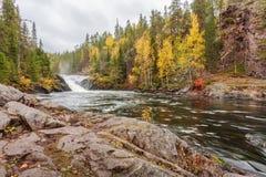 Flüssiger Lappland-Gebirgsfluss im Herbst Stockfotografie
