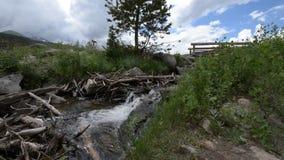 Flüssiger Nebenfluss und kleine Brücke nahe Sprague Lake Stockfotografie