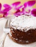 Flüssiger Schokoladenkuchen Stockfotografie