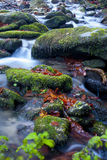 Flüssiges Wasser Stockfotos
