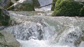 Flüssiges Wasser in der Natur stock footage