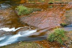 Flüssiges Wasser des klaren Flusses Stockfoto