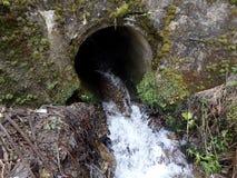 Flüssiges Wasser durch Rohr im Wald Stockbilder