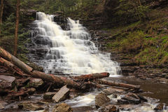FL Ricketts Waterfall, Ricketts Glen Pennsylvania Royalty Free Stock Image