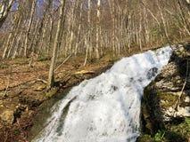 Fl?ssige Quelle Tschuder mit Wasserfall und Karstfr?hling oder Karstquelle Tschuder, Schwende der Wasserversorgung lizenzfreies stockbild