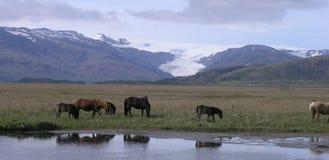 Flaajokull Stock Foto's