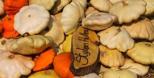 Flach orange und weißer Kürbis Stockfoto