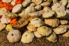 Flach orange und weißer Kürbis Lizenzfreie Stockbilder