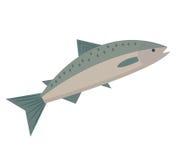 Flache Art der Lachsikone Seefisch lokalisiert auf weißem Hintergrund Vektorillustration, Clipart Stockfotos
