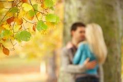 Flache Fokus-Ansicht der romantischen Jugendpaare Lizenzfreies Stockbild