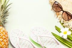 Flache gelegte Einzelteile der Reise: frische Ananas, Sonnenbrille, Strandpantoffel, tropische Blume und Palmblatt, die auf gr?ne stockfoto