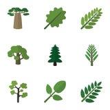 Flache Ikonen-Biosatz Baum, Dschungel, Akazien-Blatt und andere Vektor-Gegenstände Schließt auch Akazie, Laub, Blatt-Elemente mit Lizenzfreie Stockfotos