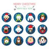 Flache Ikonen eingestellt: : Weihnachten, verschiedene Hunderassen Stockbilder
