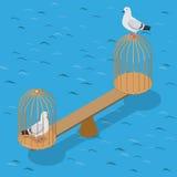 Flache isometrische Tauben stuft Birdcagevektor 3d Kappe ein lizenzfreie abbildung