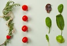 Flache Lage des Grüns verlässt mit Tomaten Lizenzfreie Stockbilder