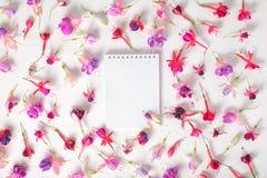 Flache Lage des leeren Notizbuches und Köpfe des hybriden bunten pinkfarbenen flo Stockbilder