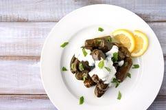 Flache Lage einer Platte von Yaprak-sarma von der türkischen Küche Stockfotos