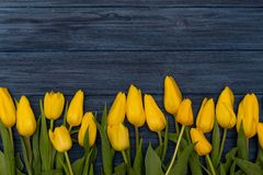 Flache Lageblumen Stockfotos