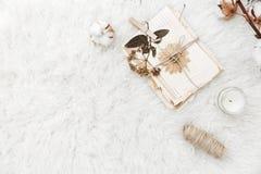Flache Lagezusammensetzung mit trockenen Blumen und alten Buchstaben Weinlesepostkarten und -umschläge Lizenzfreie Stockfotografie