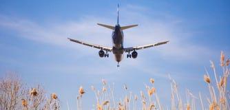 Flache Landung Aeroflot-Fluglinien Stockbilder