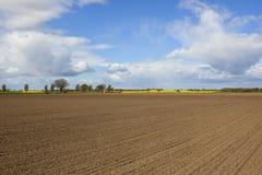Flache landwirtschaftliche Landschaft Stockbilder