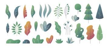 Flache minimale Blätter FantasieFarbabstufung, lässt Büsche und Bäume entwerfen Schablonen, Natursteigungsanlagen Vektor stock abbildung