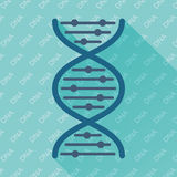 Flache Vektorikone DNA Lizenzfreie Stockbilder