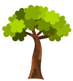 Flacher Baum Lizenzfreies Stockfoto