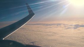 Flacher Flügel im Flug stock footage