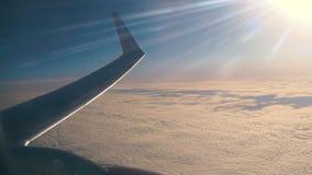 Flacher Flügel im Flug stock video footage
