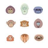 Flacher Ikonensatz des unterschiedlichen Affen Lizenzfreie Stockfotos