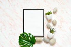 Flacher Lagemarmorschreibtisch mit weißem leerem Rahmen für Text, Steine und Succulentshintergrund stockbilder