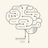 Flacher linearer Infographic-Bildungs-Entwurf Brain Concept Vektor Lizenzfreie Stockbilder