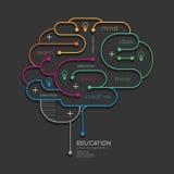 Flacher linearer Infographic-Bildungs-Entwurf Brain Concept Vektor Stockbild