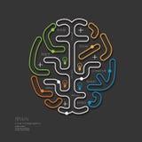 Flacher linearer Infographic-Bildungs-Entwurf Brain Concept Vektor Lizenzfreie Stockfotos