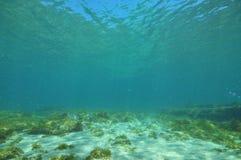 Flacher Meeresgrund mit Bereichen des Sandes und des Felsens Lizenzfreies Stockfoto