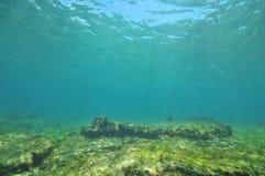 Flacher Meeresgrund mit Bereichen des Sandes und des Felsens Stockbild