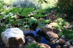 Flacher Teich umgeben durch Steine und Anlagen Stockfotos