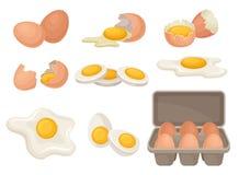 Flacher Vektorsatz Eier in den verschiedenen Formen roh, gekocht und gebraten Biohofprodukt Kochen des Bestandteiles zum Frühstüc stock abbildung