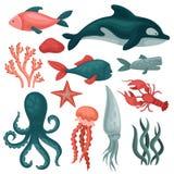 Flacher Vektorsatz Seetiere und -gegenstände Fische, Quallen, rote Krabbe, Kalmar, Krake, seastar, Meerespflanzen und Steine stock abbildung