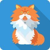 Flaches Design der Ikone der Vektor-persischen Katze Stockfotos