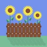 Flaches Design der Sonnenblumen Stockfotos