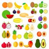 Flaches ganzes und Hälften von Früchten Lizenzfreie Stockfotos