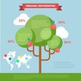 Flaches infographics Vektor des organischen Lebens: globales eco freundlicher Baum Stockbilder