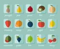 Flaches volle Farbdesign Das Bild des Frucht- und Beerensymbols Stockbild