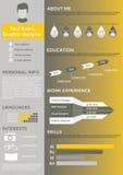Flaches Zusammenfassungsinformationsgrafikdesign Stockbilder