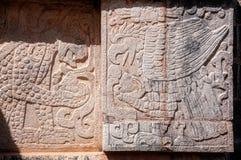 Flachrelief von Mayasymbolen der Adler und der Jaguar Stockfotos