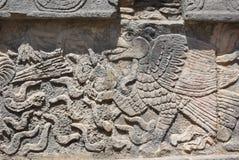 Flachreliefschnitzen des Adlers, Mexiko Stockbilder