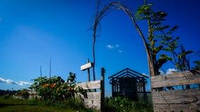 Flachschuss des Gartens und des Gewächshauses stockbilder