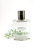 Flacon de parfum avec le cologne Image stock